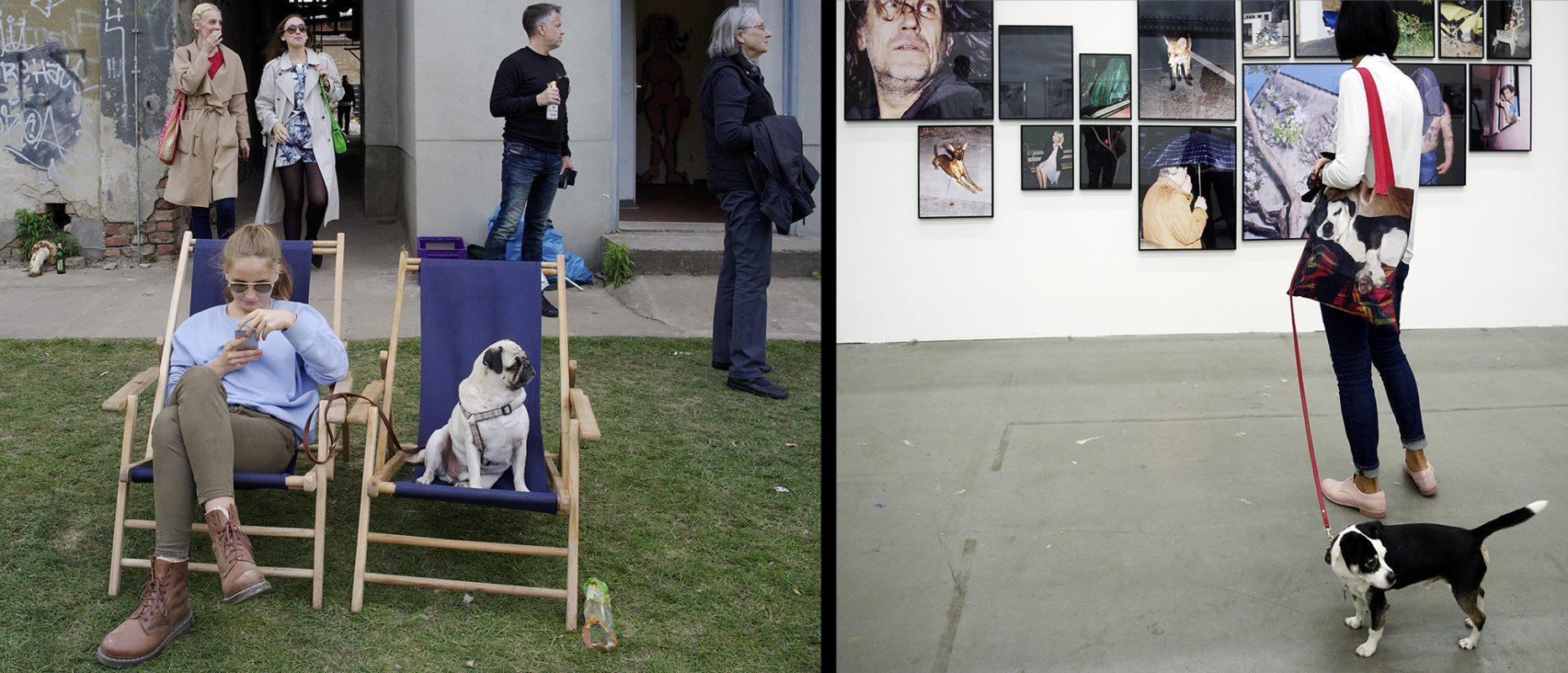 Atelierareal Lehderstraße, Jonas Burger, Besucher, Mops, Ausstellung