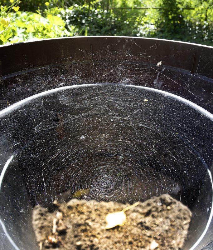 Topfspinnennetz