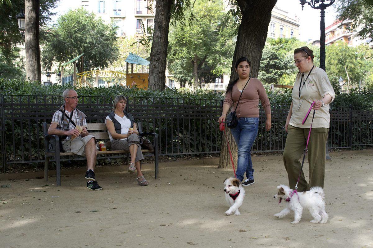 Touristen Parkebank essen 2 Hundehalter