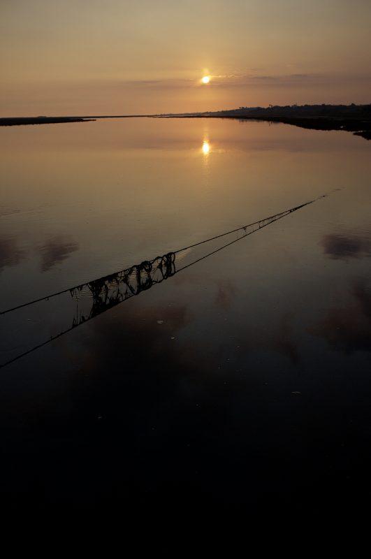 Sonnenuntergang Netze
