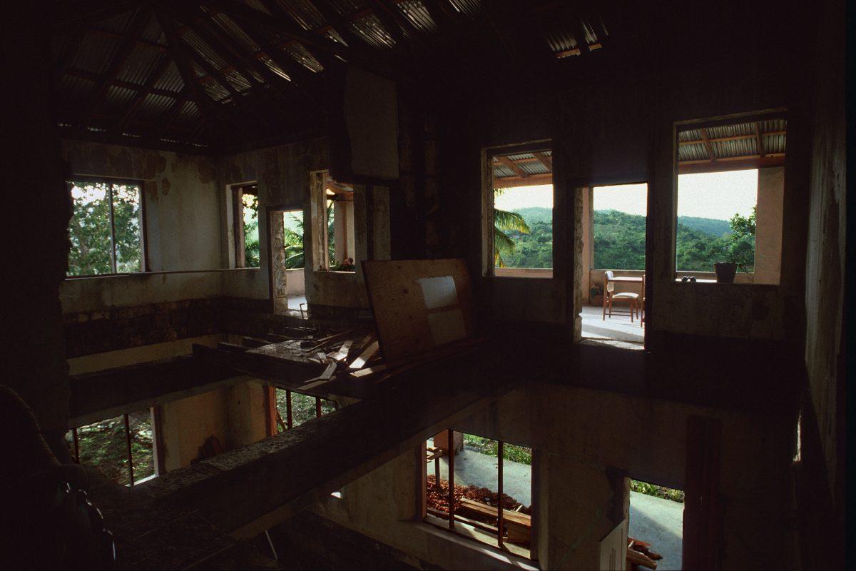 Jamaika, Dschungel, Hausskelett